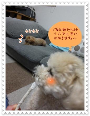 b6_20120519211720.jpg