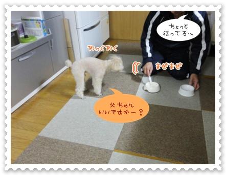b8_20120421145529.jpg