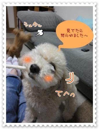 b8_20120519212447.jpg