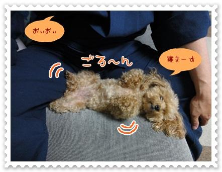 b8_20120607203903.jpg