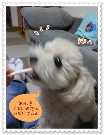 b9_20120519212446.jpg