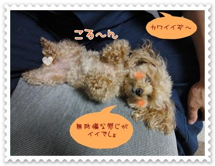 b9_20120607203902.jpg