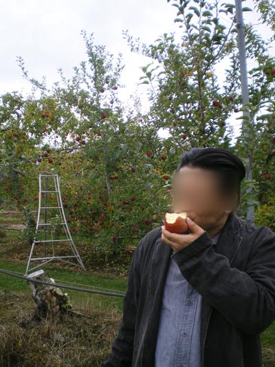 りんごを頬張る旦那さん(通販)
