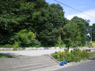 会社近くの公園(全体)