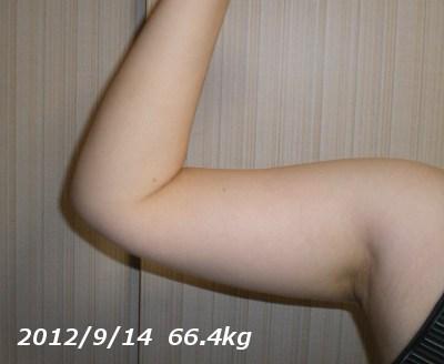 ミオドレ検証(二の腕)