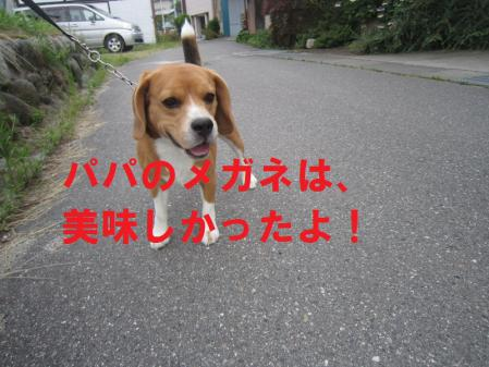 002_20120812165558.jpg
