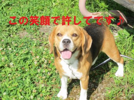 024_20120812165557.jpg