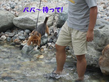 IMG_0050_20120814230505.jpg