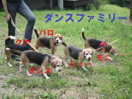IMG_0069_20120826004311.jpg