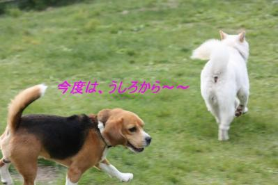 IMG_5895.jpg