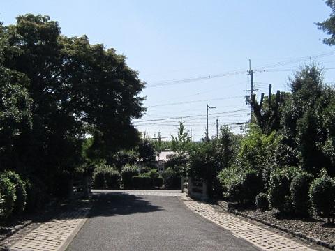 81-30.jpg