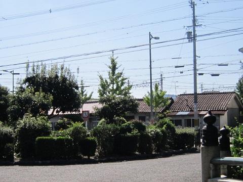 81-31.jpg