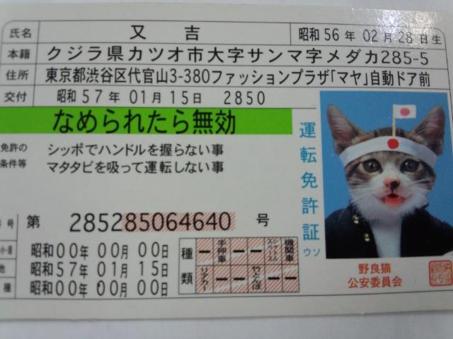 20130328151401fa7.jpg