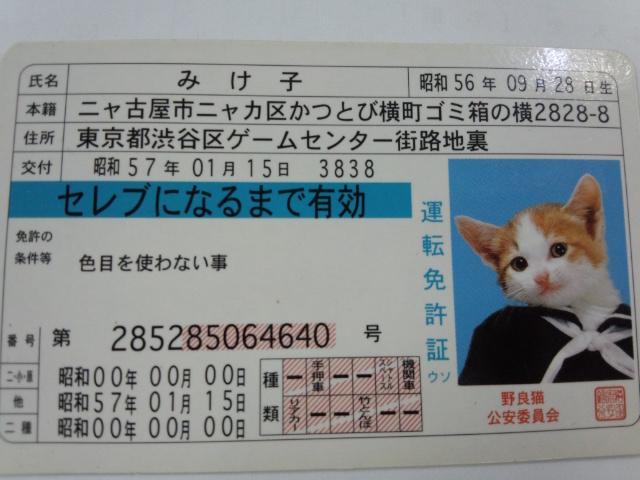 20130328151402af0.jpg