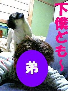 08-03-04_22-38.jpg