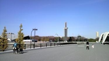 駒沢五輪公園2-09