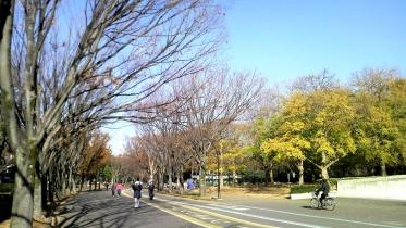 駒沢五輪公園2-12