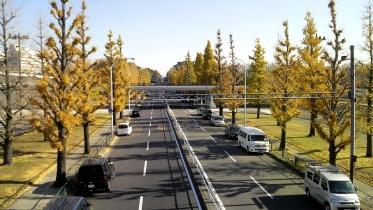駒沢五輪公園2-14