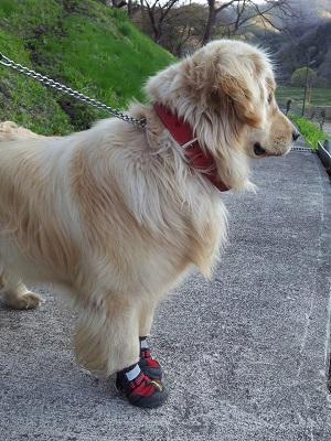 赤い靴はいたララ