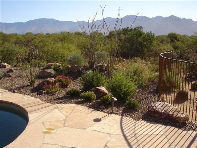 Tucson backyard gardening ideas photograph tropical landsc for Landscaping rocks tucson