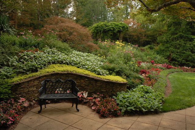 low maintenance back yard landscaping ideas