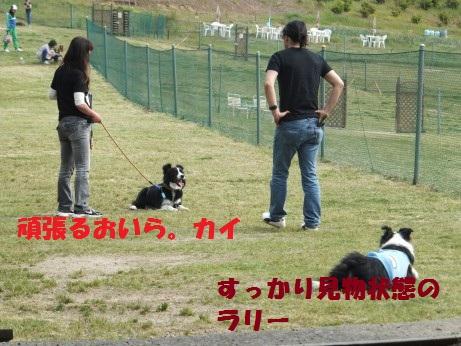 DSCF5979.jpg