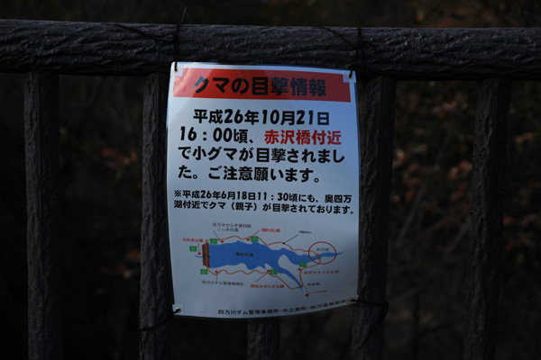 photo781.jpg