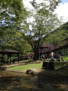 親水公園2
