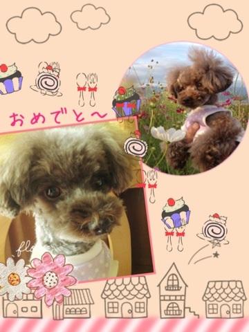 image_20121009114241.jpg