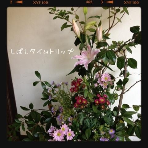 image_20121119190723.jpg