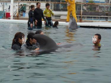 クジラさんと触れ合い中