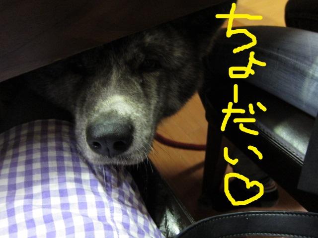 20141102_2037.jpg