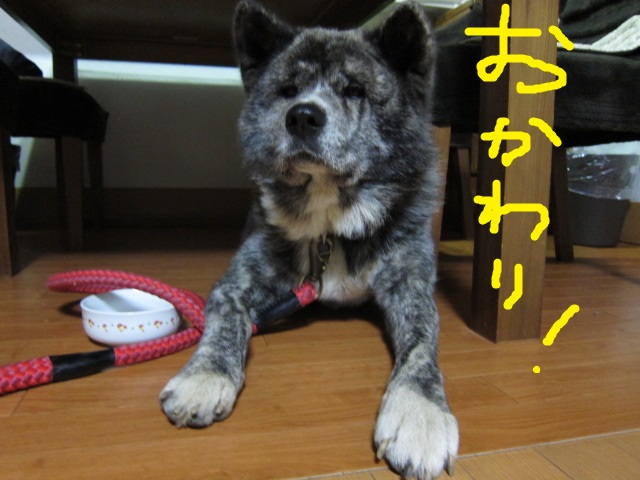 20141115_2179.jpg