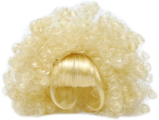 20121227-wig01.jpg