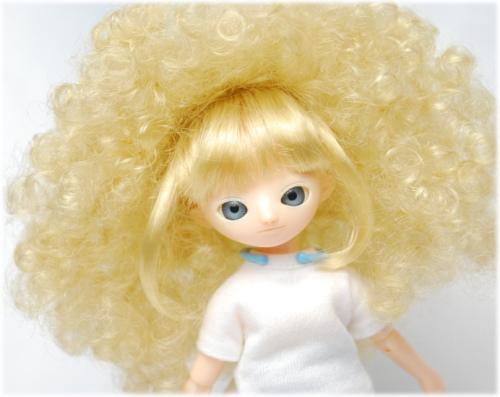 20121227-wig08.jpg