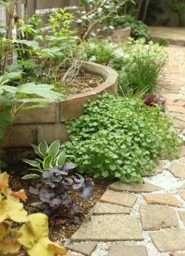 下草の茂る花壇