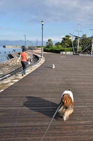 記念日のお散歩