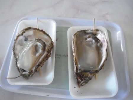にしめ 岩牡蠣2