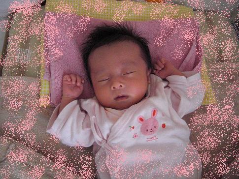 2012_0403_095222-CIMG0852.jpg