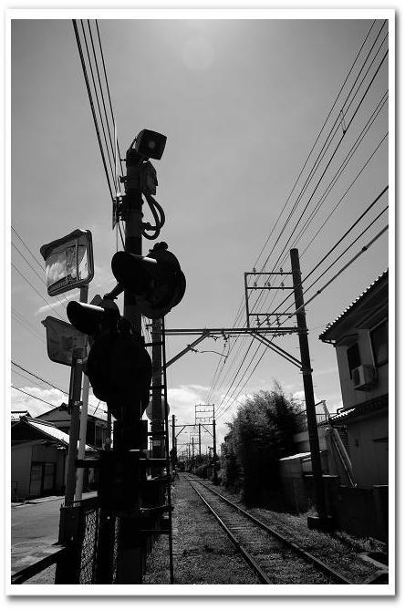 12.8.21磯ノ浦 (3)