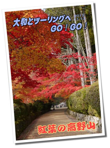12.11.13 高野龍神スカイライン