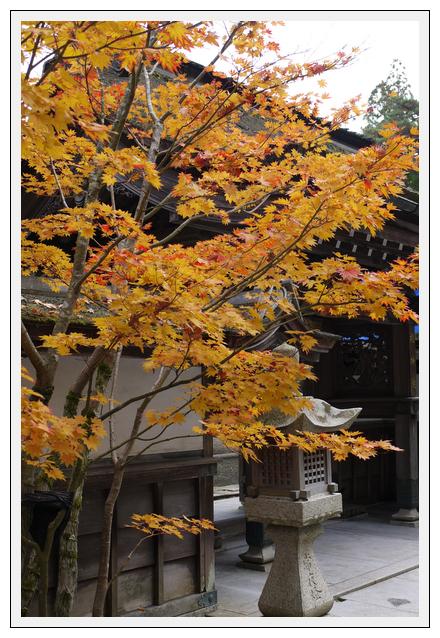 12.11.13 高野龍神スカイライン (3)