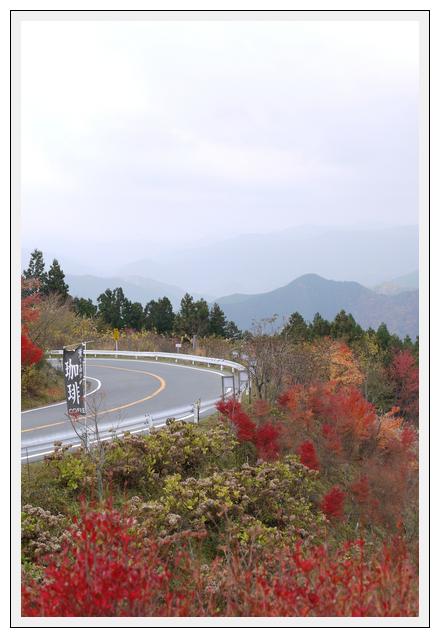 12.11.13 高野龍神スカイライン (7)