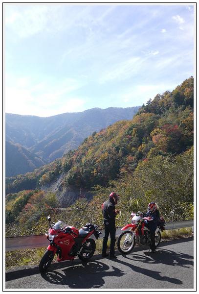 2014年11月4日 国道309号線 行者環林道 (5)