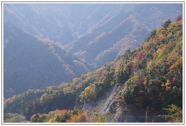 2014年11月4日 国道309号線 行者環林道 (6)
