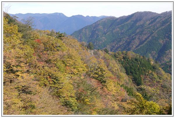 2014年11月4日 国道309号線 行者環林道 (13)