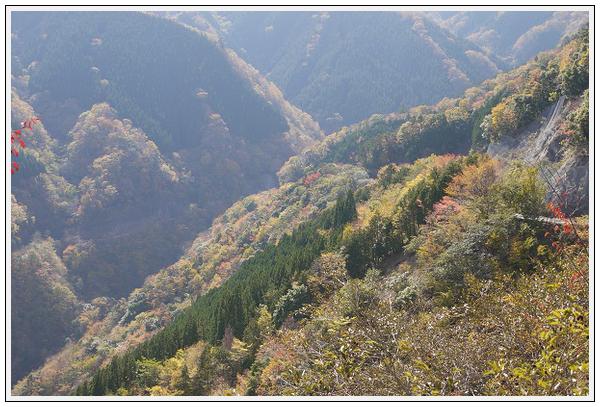 2014年11月4日 国道309号線 行者環林道 (7)