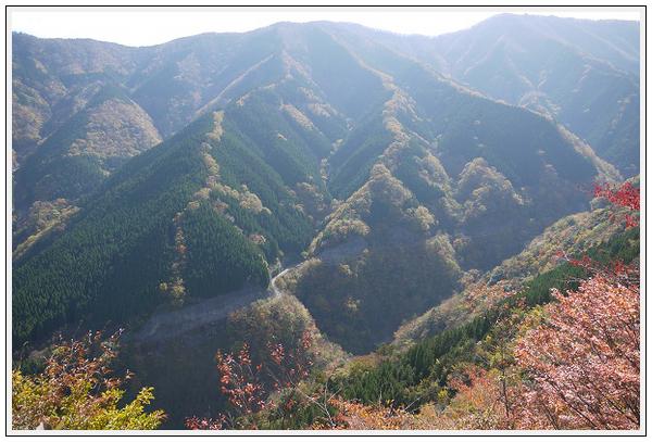 2014年11月4日 国道309号線 行者環林道 (9)