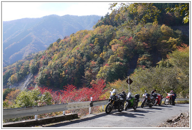 2014年11月4日 国道309号線 行者環林道 (10)