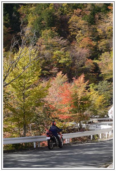 2014年11月4日 国道309号線 行者環林道 (12)